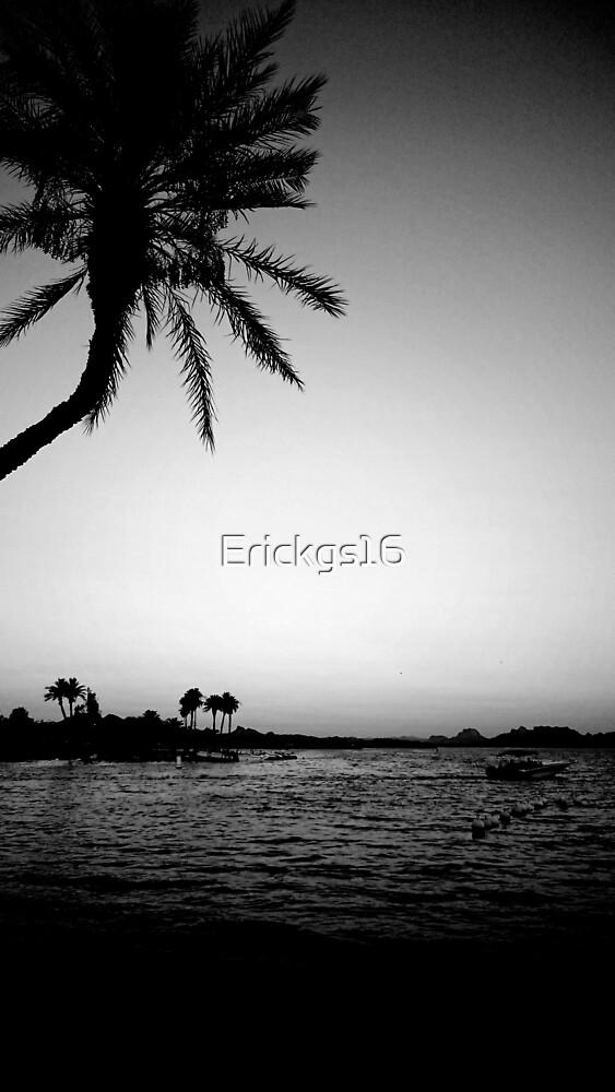 B&W LAKE by Erickgs16