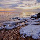 A Cold Sandy Hook Winter by Debra Fedchin