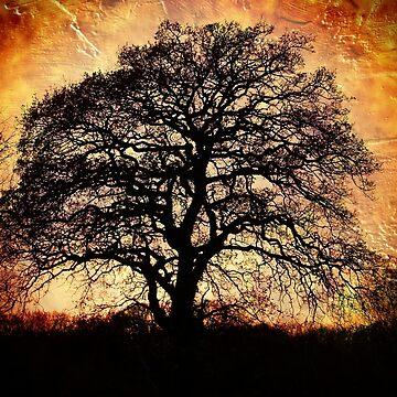 Fiery Winter Tree by GoatGirl
