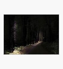 Taking Flight, Long Pond Road, Benton, New Hampshire Photographic Print