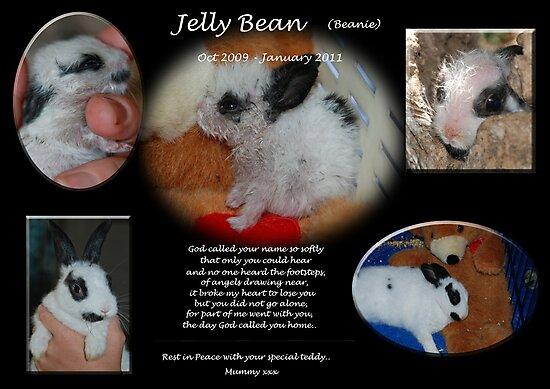 RIP-Orphan Jellybean.. by Kat36