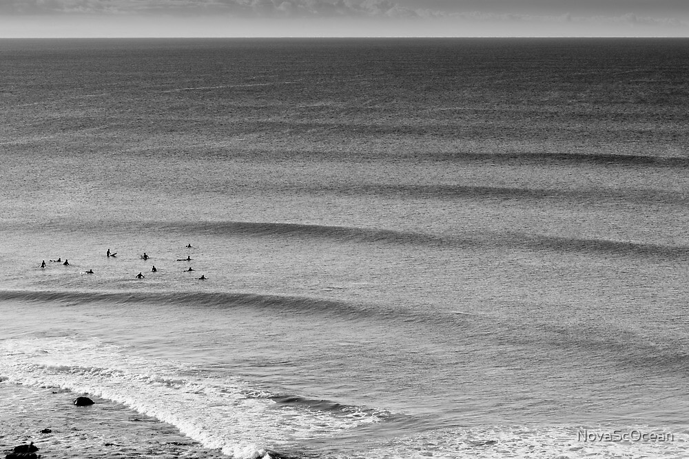 Swell Lines by NovaScOcean