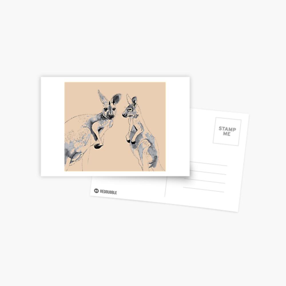 Kangaroos Black and White Postcard