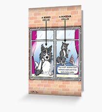 Bored Collie Greeting Card