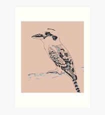 Kookaburra Black and White Art Print