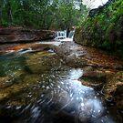 Twin falls by jason owens