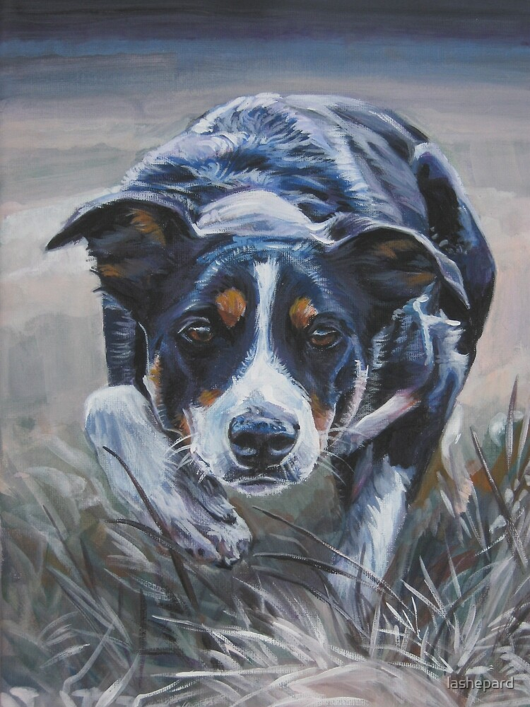 Border Collie Fine Art Painting by lashepard