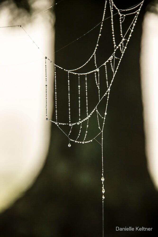 Web me a Necklace by Danielle Keltner