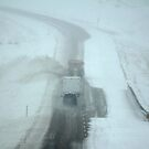 Spring Blizzard in Montana by AUSSKY