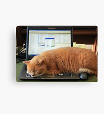 Keyboard Kat Canvas Print