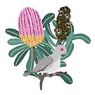 Australian Native Banksia - Australiana decor - Australian Native Bird - Diamond Dove by thatsgraphic