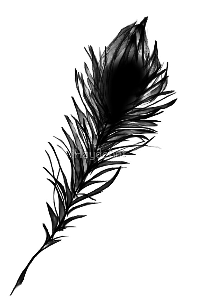 Black Bird Feather Beauty by Haydehnt