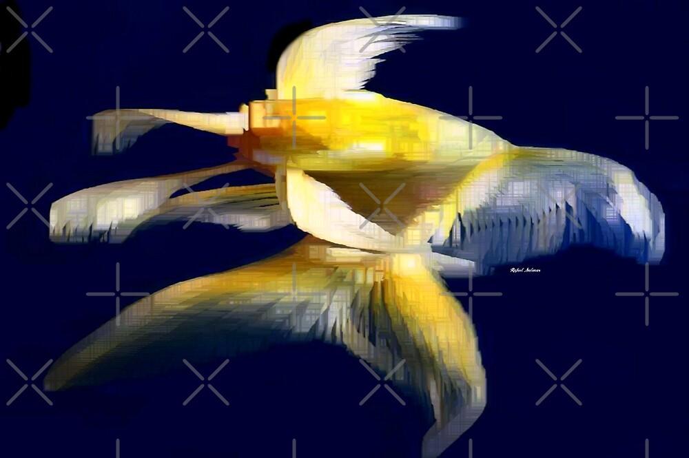 Abstract Flight by Rafael Salazar