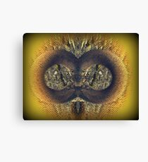 I Look At You  :-) Canvas Print