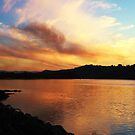 Sunset on the Tweed by gail woodbury