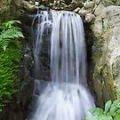 Flowing Waterfall - Hong Kong Park by Richie Wessen