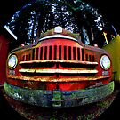 Happy Retired Logging Truck by Clayton Bruster