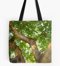Extreme View of a Tree Tote Bag