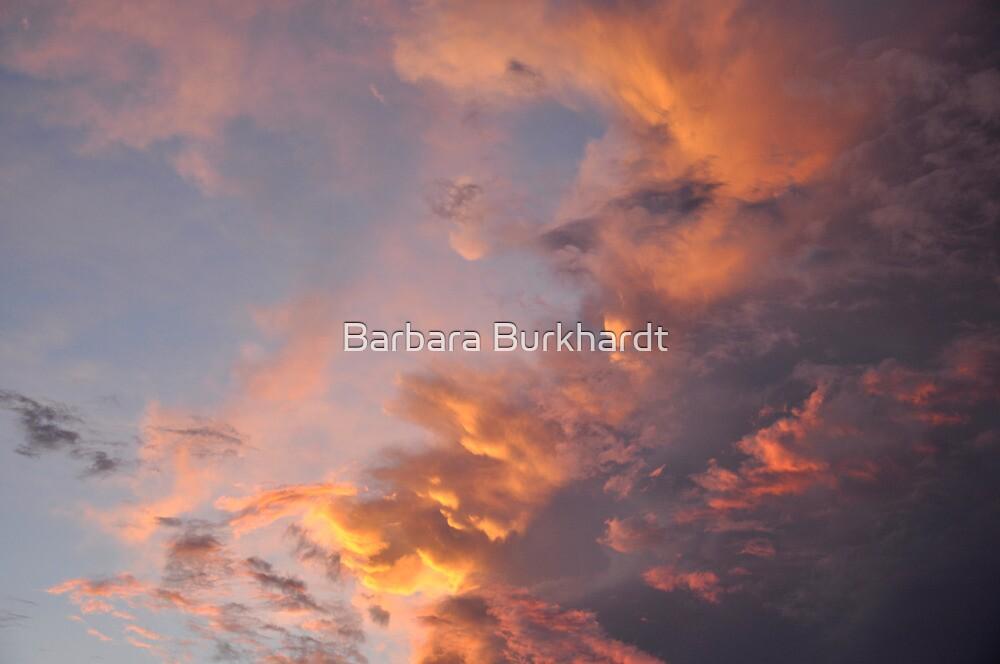 Fire in the Sky - A Cloud Study by Barbara Burkhardt