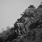 Rocks on the Hill - Hong Kong by Richie Wessen