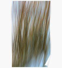 Prairie Grass In Snow Poster