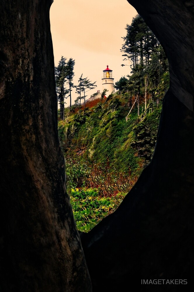 Heceta Head Lighthouse - Through The Trees by IMAGETAKERS