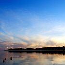 FEOCK SUNSET by AndyReeve