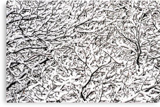 Winter in Austria by Kasia Nowak