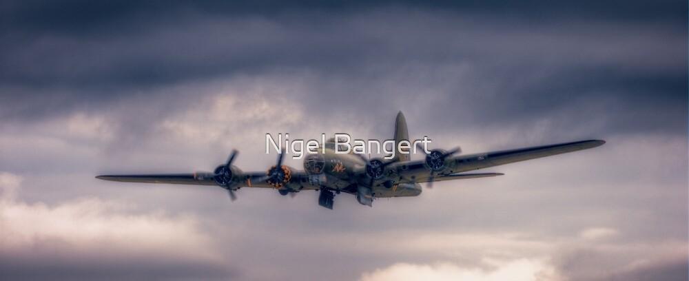 Sally B Bomb Doors by Nigel Bangert
