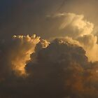 Cloudscape  by Laura Puglia