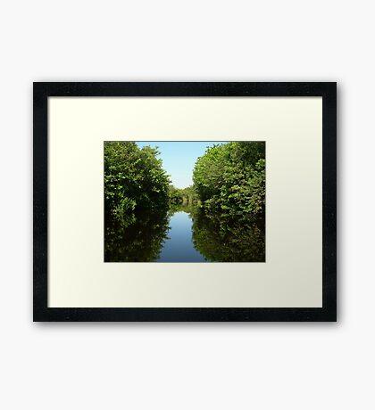 Mirror or not Framed Print