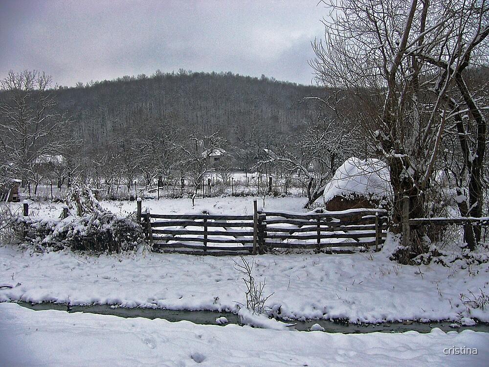 winter story 3 by cristina