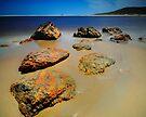 Arthur River Rocks by Garth Smith