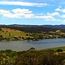 Bradys Lookout by harshcancerian