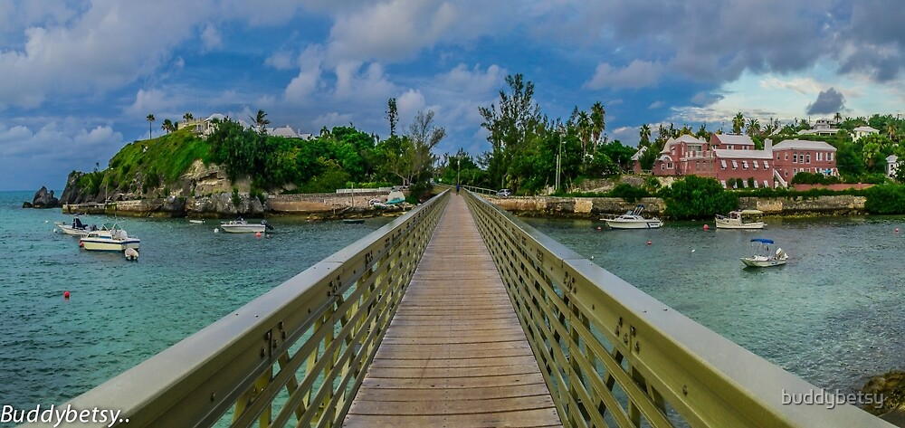 the railway trail walk way Baileys Bay Bermuda.. by buddybetsy