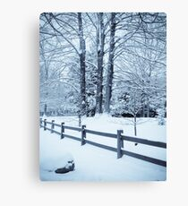 blue fence and trees Canvas Print