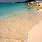 Seashore, Long Island, Bahamas by Shane Pinder