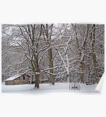 Winter in Ringwood Poster