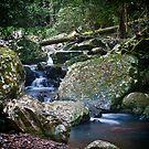 Cave Creek crop by Odille Esmonde-Morgan