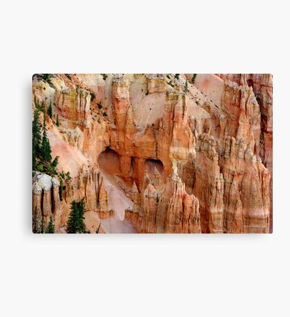 Hideaway ~ Bryce Canyon Canvas Print