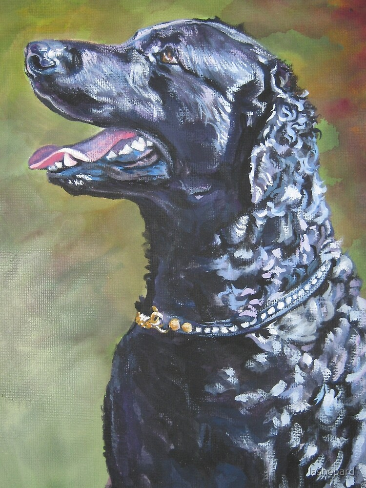 Curly-Coated Retriever Fine Art Painting by lashepard