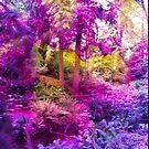 Purple haven by TaylerMacneill