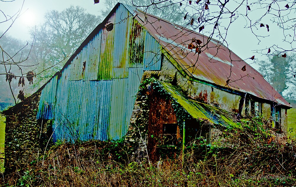 The Old Shed by Dean Messenger