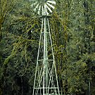 Old Windmill by Clayton Bruster