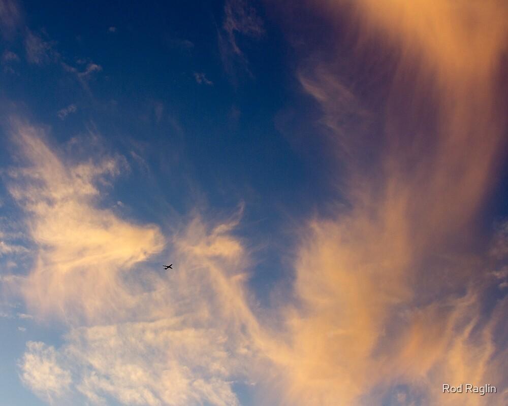 Sunset Sylphs dwarf Jetiner by Rod Raglin