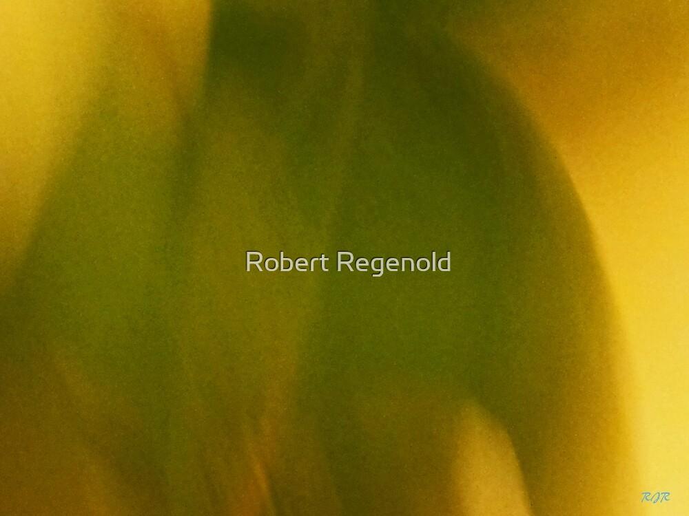 """Arm Of The Intruder"" by Robert Regenold"