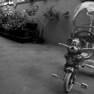 Ride the Tricycle  by Akash Puthraya