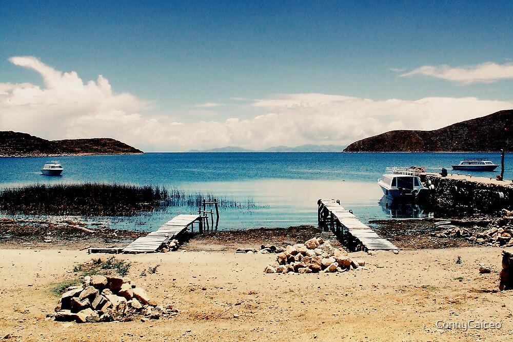 Isla del Sol I by Constanza Barnier