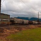 Waiting On The Train - Sumas Washington by Clayton Bruster