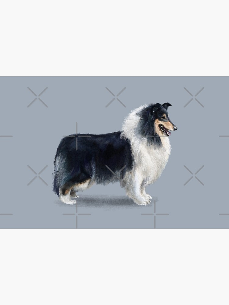 Tri Coloured Rough Collie by elspethrose